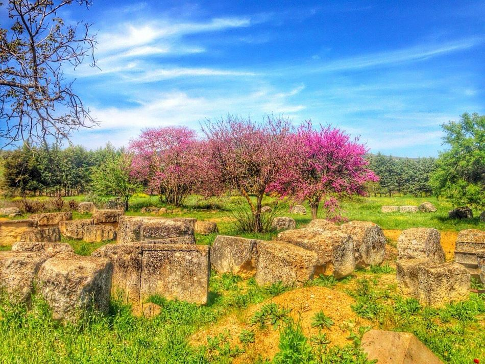 Ancient Architecture Greece Nemea HDR HDR Collection Check This Out Hi! Hello World Hanging Out Enjoying Life