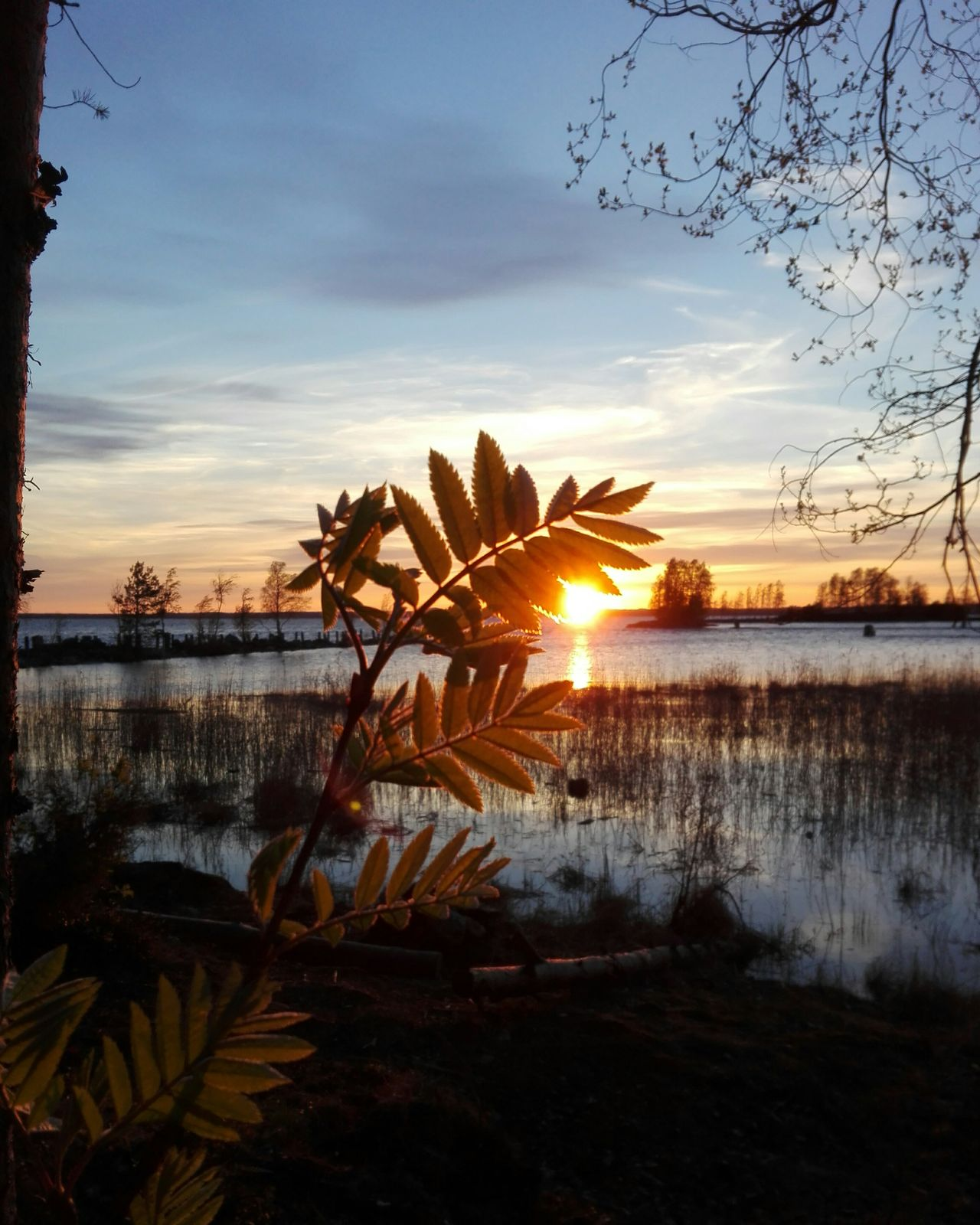 Summer night Sunset Water Outdoors Nature Beauty In Nature Naturelovers Lake View Landscape_photography Sky Finnish Nature Nature Photography Photographer Naturebeauty Summer Memories... Coloured Sky Sunlight Photography