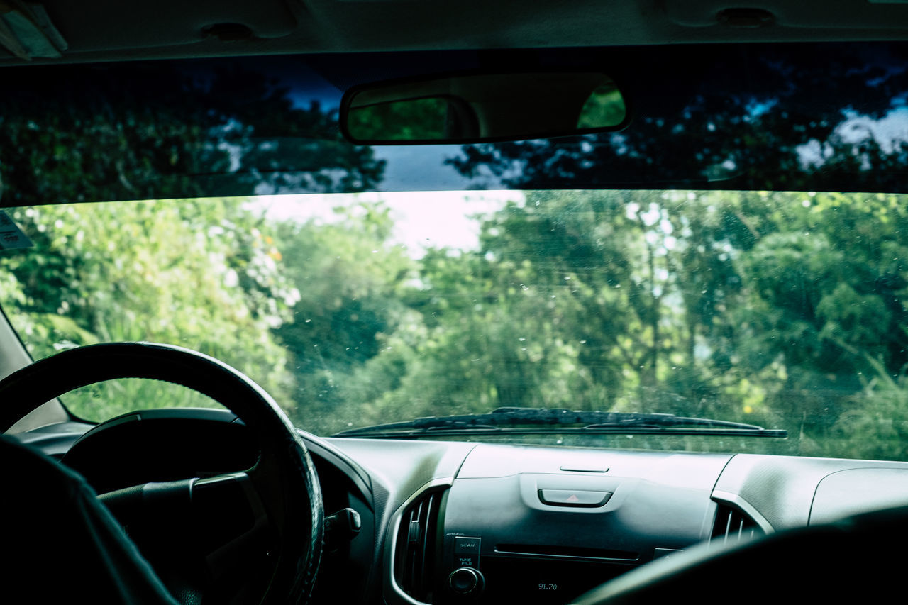 Adventure Backseat Beauty In Nature Car Car Interior Countryside Dashboard Day Driving Land Vehicle Nature People Personal Perspective Steering Wheel Transportation Travel Travelling Vacation Vehicle Interior Voyage Windscreen Windshield Family Bonfire Outing EyeEmNewHere