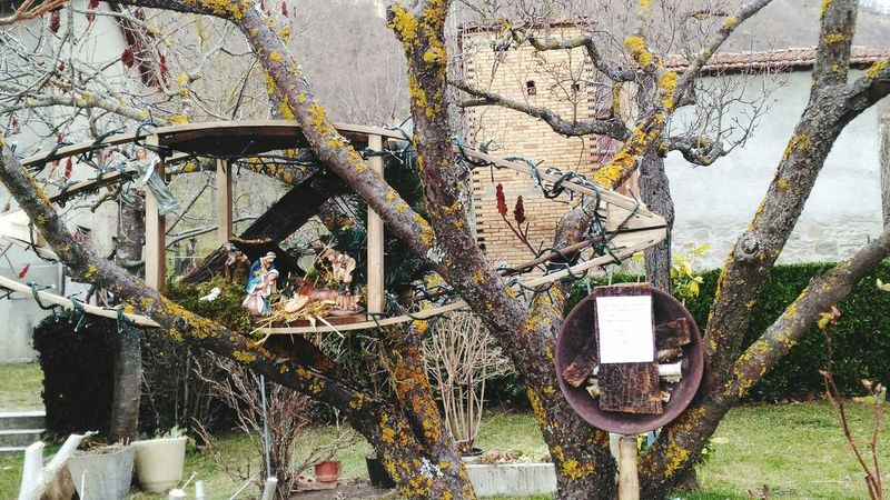 Presepe Etnografico Attrezzi Antichi Riuso EyeEm Selects Day Outdoors No People Built Structure Close-up Architecture