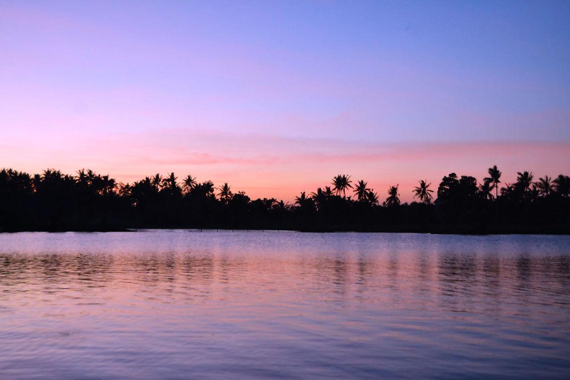 Sunset Dusk Purplesky Purple Skies Photophile Light Lake Lake View Reflection Tree Scenics Water Nature Tropics Sumlang Lake Summer EyeemPhilippines