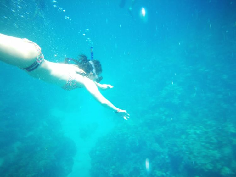 People And Places Sea Water Blue Travel Beauty In Nature Vacations Outdoors Tranquility Non-urban Scene Swimming UnderSea Nature