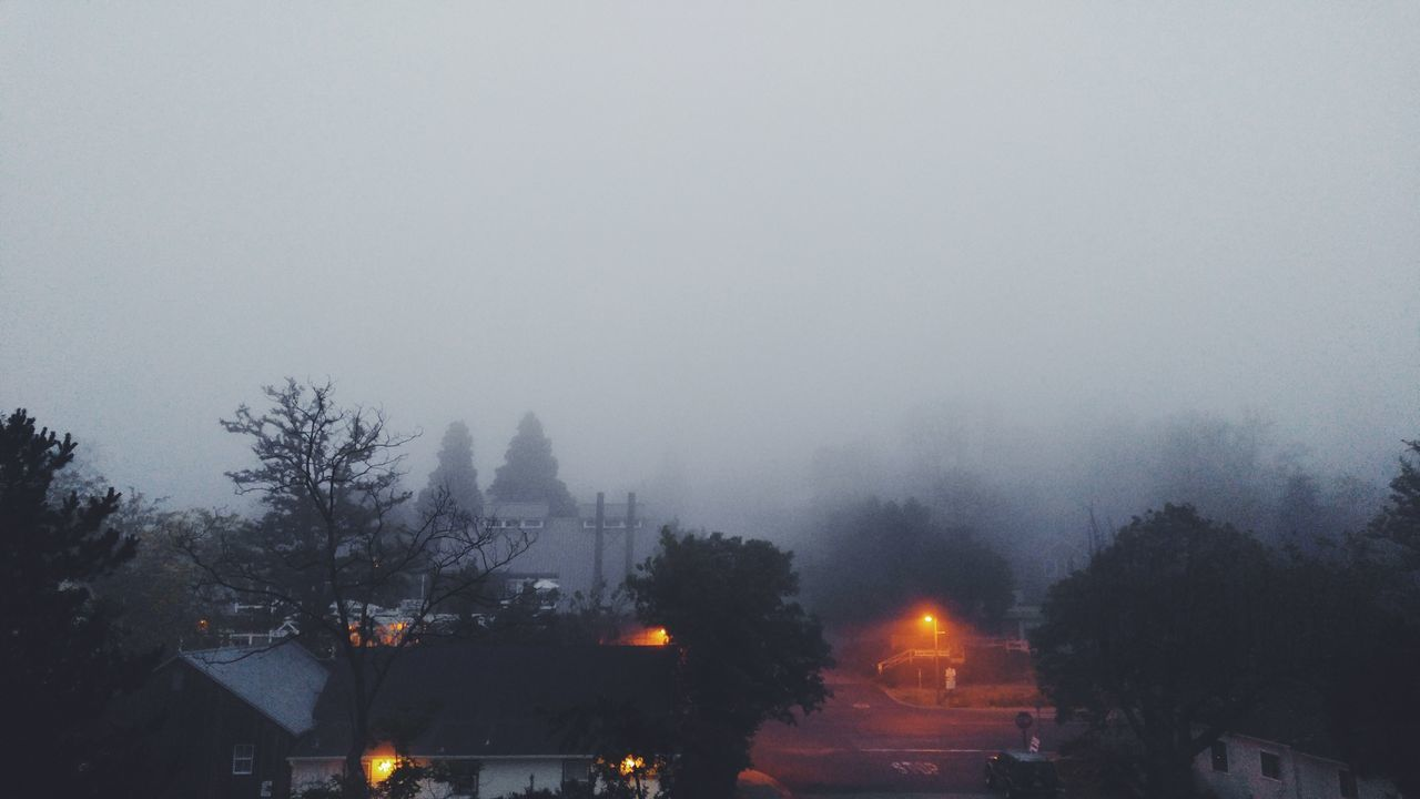 Misty Morning Foggy Morning Foggy Landscape Landscape_Collection Creepy Spooky Atmosphere