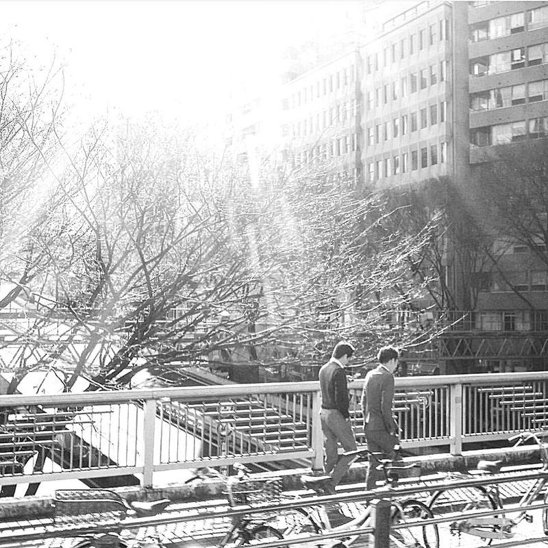 Tokyo Shinjuku Drive By Photo Japan Street Photography Streetphotography Tokyo Street Photography Tokyo Winter Tokyo,Japan Bnw_captures Bnwtokyo Bnwstreetphotography Bnwphotography Bnwjapan Beautiful December Morning Cold But Sunny