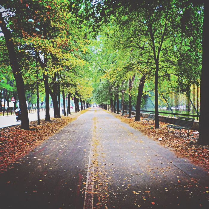 Parcosempione Autumn Welcomeoctober Picoftheday