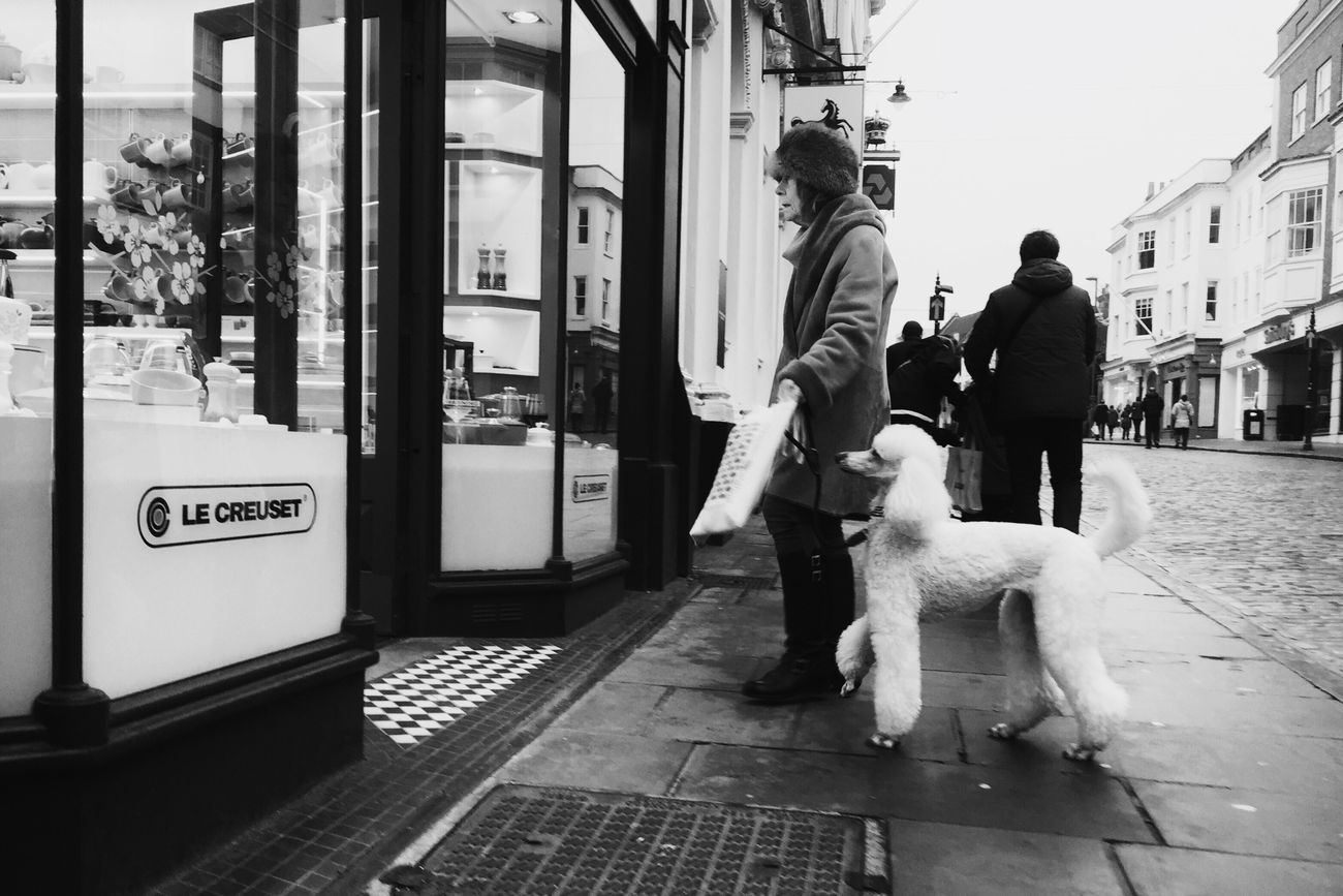 Mommy's boy • Street Streetphotography Streetphoto_bw Streetbwcolor Dog Outdoors People Londonstreets London Lifestyle