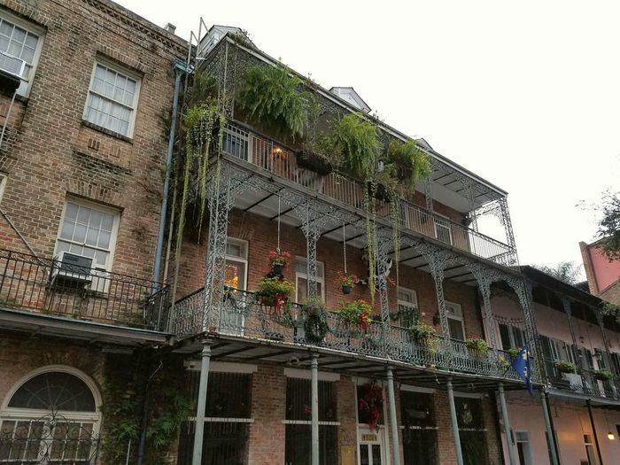 New Orleans French Quarter Architecture Built Structure Building Exterior Window Low Angle View Outdoors Sky No People City Day