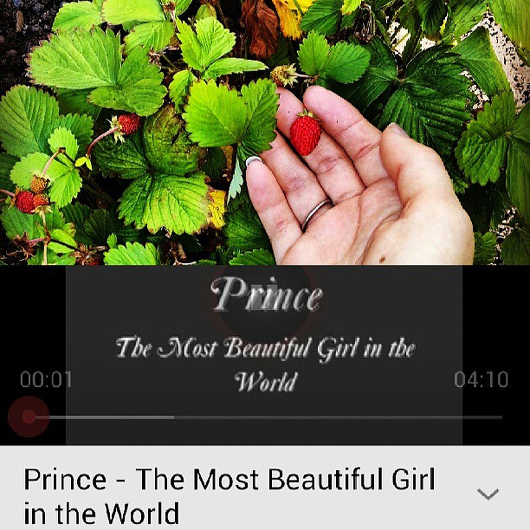 Njuter av kvällssolen, smultron och Mr.Prince i hörlurarna. Pureawesomness Tasteofsummer Prince  Lovemusic