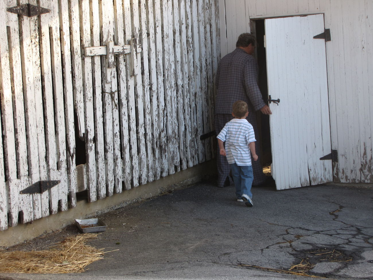 Feeding the animals Barn Barn Door Boy Casual Clothing Chores Cracks Door Doorway Early Morning Farm Farm Life Fatherhood Moments Feeding Animals Gate Hay Hinges Man Old Open Open Door Peeling Paint Pennsylvania People Sunlight White Barn