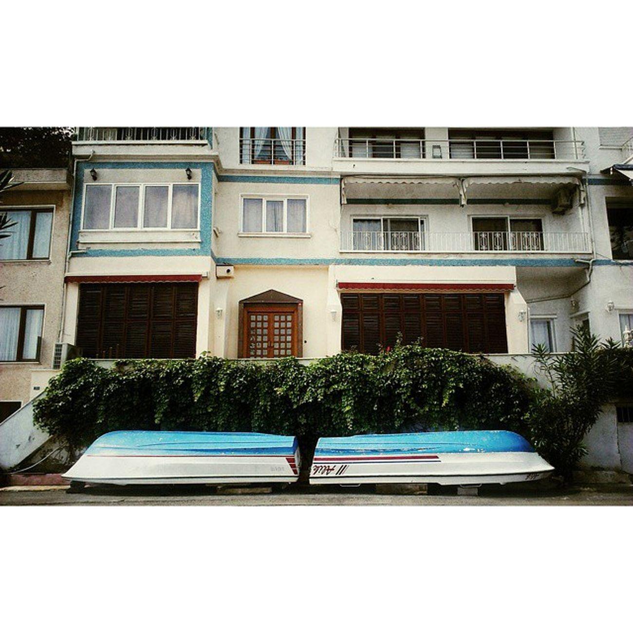 Insta Instagood Instamood VSCO Vscocam Vscomania Pictureoftheday Photooftheday Picoftheday Burgazada Istanbul