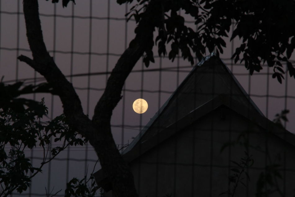 Beautiful stock photos of full moon, Architecture, Beauty In Nature, Brazil, Building
