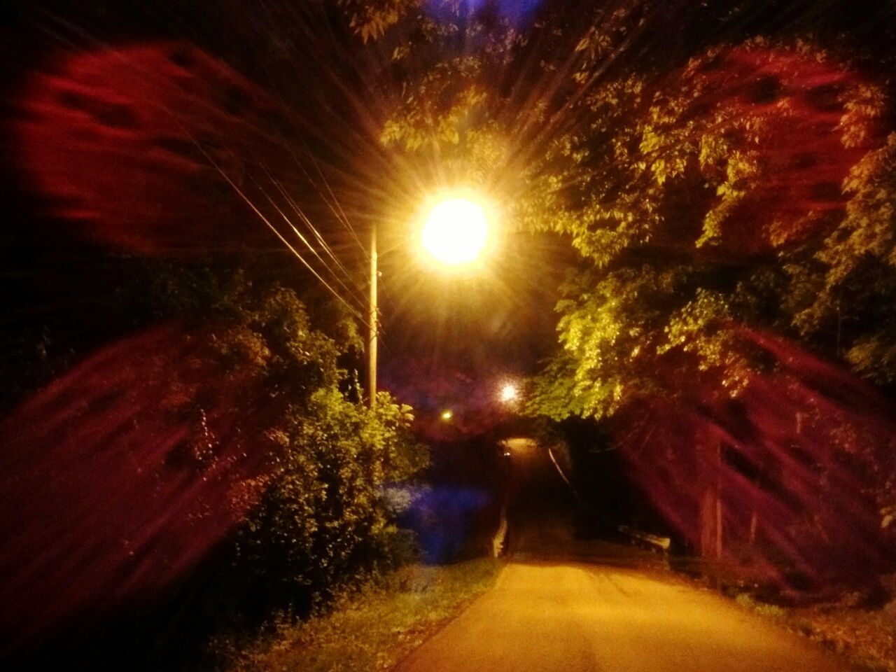 illuminated, night, road, the way forward, tree, street light, nature, outdoors, no people, transportation, beauty in nature, sky
