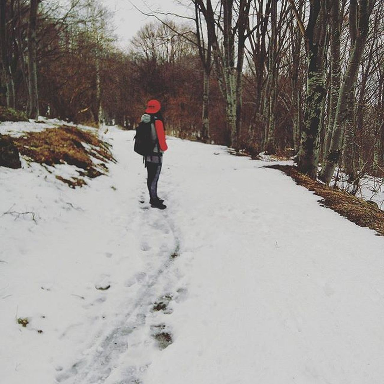 Took A Hike In The Mountain With My Miss Itis  Still Winter Upinthe Woods