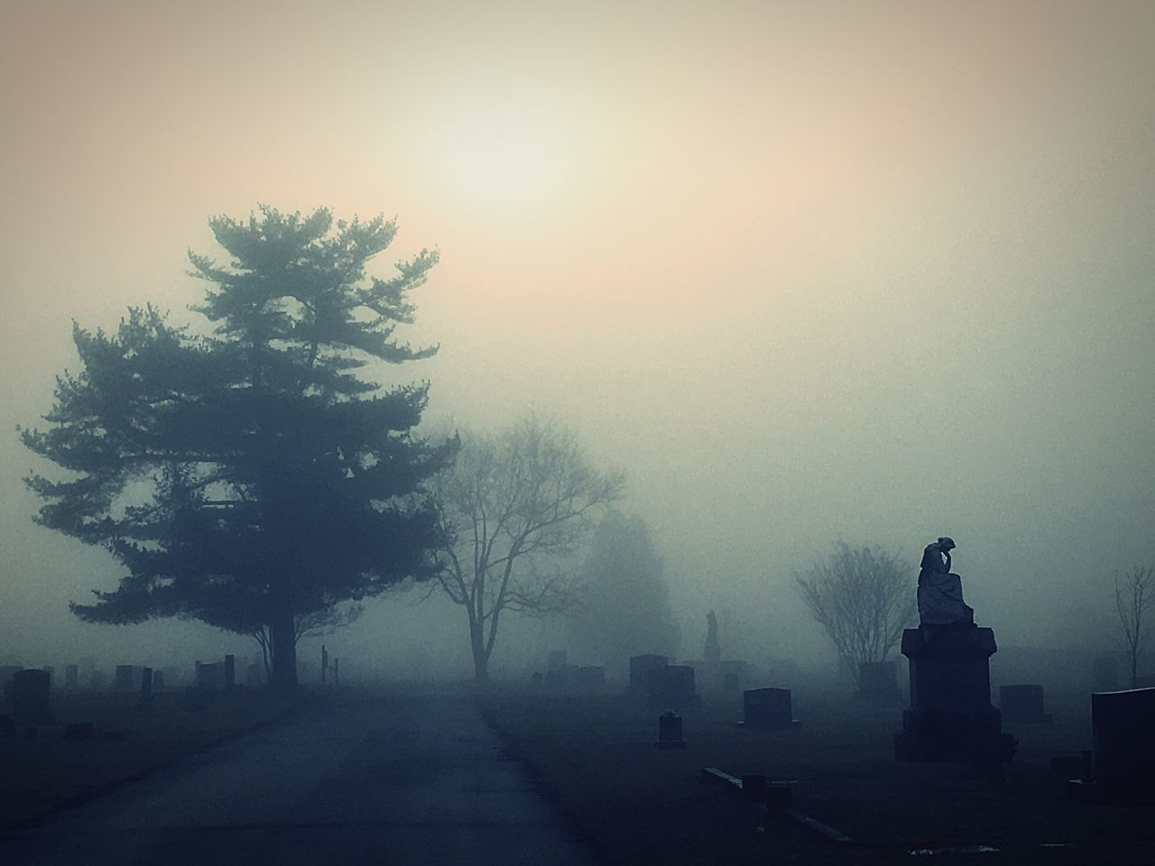 Tree Fog Nature No People Outdoors Sky Eye4photography  Tranquil Scene Beauty In Nature Edited By Me Eyeem Gallary Eyeem Market Silhouette Tranquility Dramatic Sky Dramatic Landscape Dramatic Scene Scenics Sunrise Silhouettes Road Foggy Morning Foggy Cemetary Beauty Cemetary Spooky Cemetary Shots