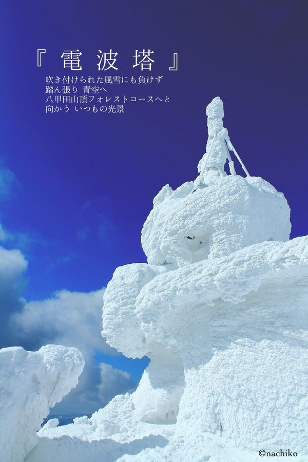 八甲田 樹氷 Sky Snow