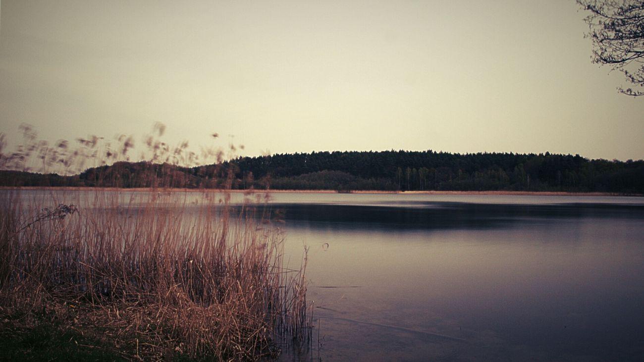 Ein ruhiger See, so schön, so düster, so geheimnisvoll... Longexposure Wasser Nature Landscape Landscape_photography Lychen