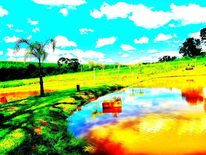 Avare SP BRASIL 🇧🇷☀️ EyeEm Nature Lover Eye4photography  EyeEm Best Shots EyeEm Sunset #sun #clouds #skylovers #sky #nature #beautifulinnature #naturalbeauty #photography #landscape EyeEmBestEdits EyeEmBestPics EyeEm Gallery Avare Heaven