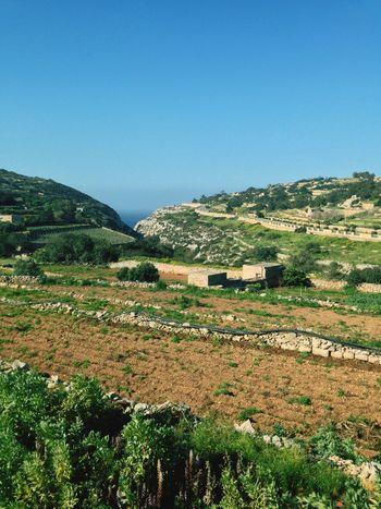 Walking Blue Grotto Panoramic View Fields Nature Greenery Malta Zurrieq Relaxing Walking Around