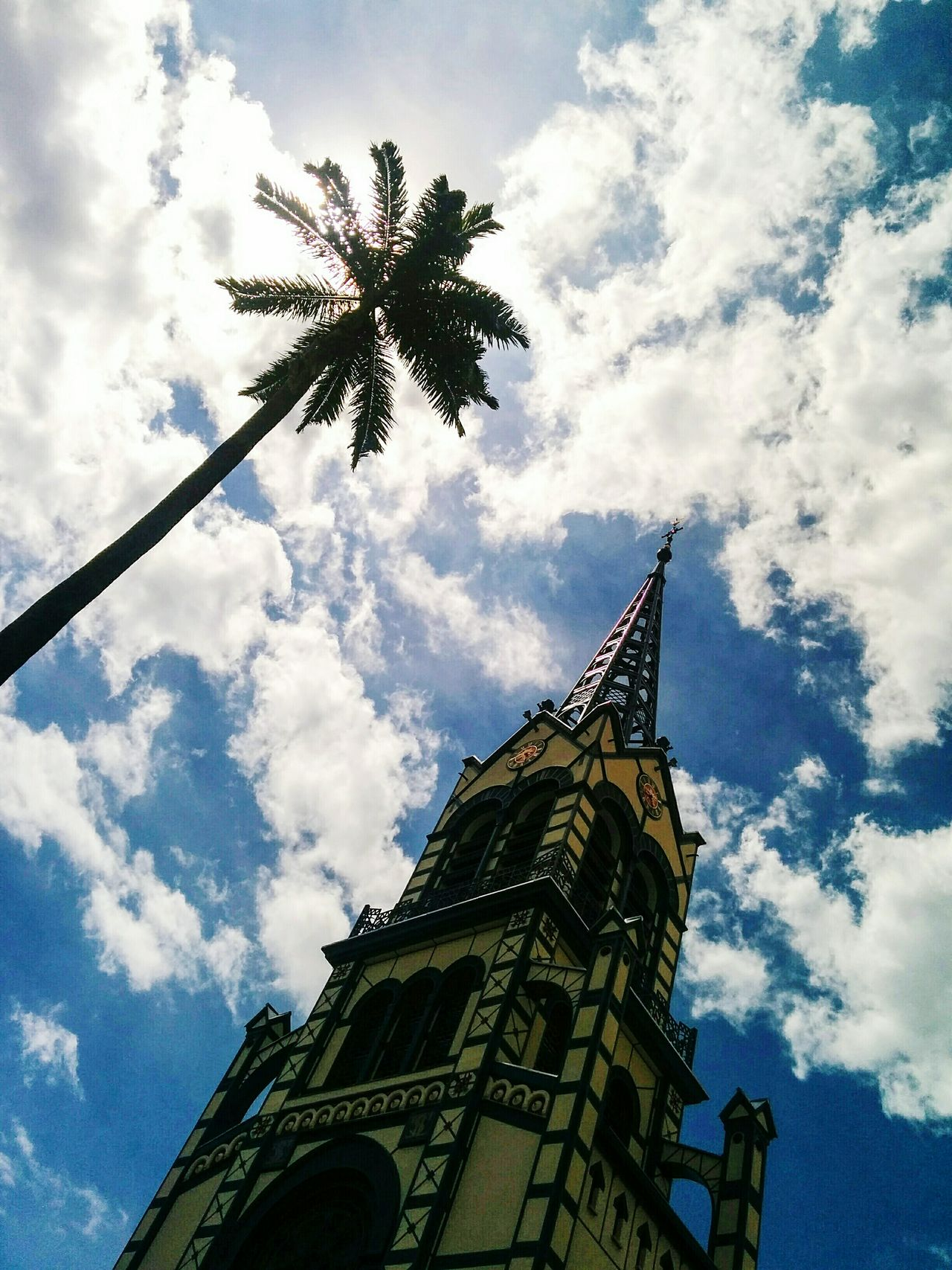 Different point of view Cloud - Sky Sky Low Angle View Architecture Travel Destinations Built Structure aOutdoors No People Tower Building Exterior Day City Palm Tree Tree Clock Tower Nature Open Edit Fresh 3 Eye4photography  EyeEm Best Shots Lookingup Palm Tree