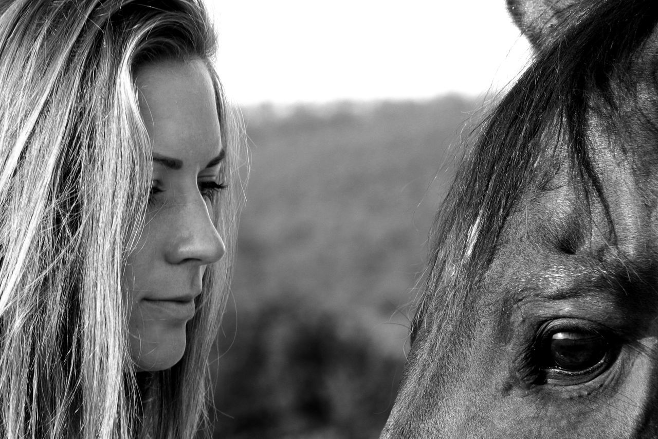 Castle Farm Field Field Field Of Wheat Head And Shoulders Horse Human Face Looking At Camera One Person Person Portrait Riding Serious Young Adult Young Women