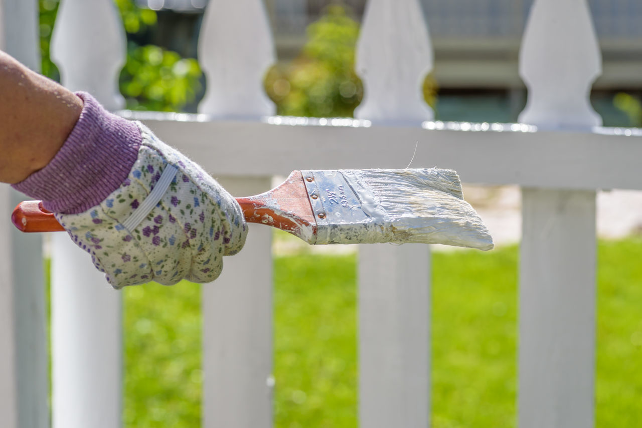Woman holding paintbrush in front of white picket fence on sunny spring day Spring Paint Weekend Activities Chores Adult Working Female Sunny Day Wood Fence Whitewashed Home Exterior Outdoors Paintbrush White Picket Fence Painting Selective Focus Close-up Picket Fence Close Up Spring 2017 Yardwork Holding In Hand Hands Only One Person Only