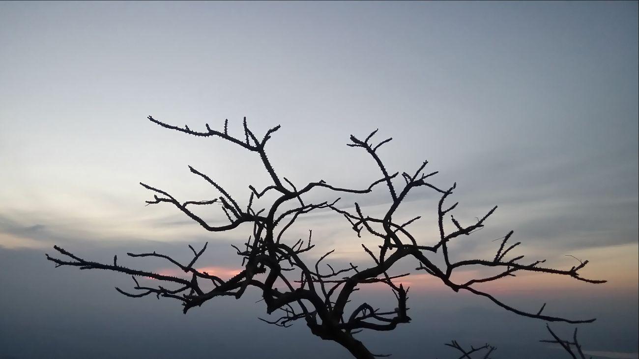Mount Abu Rajasthan, India Sunset Point