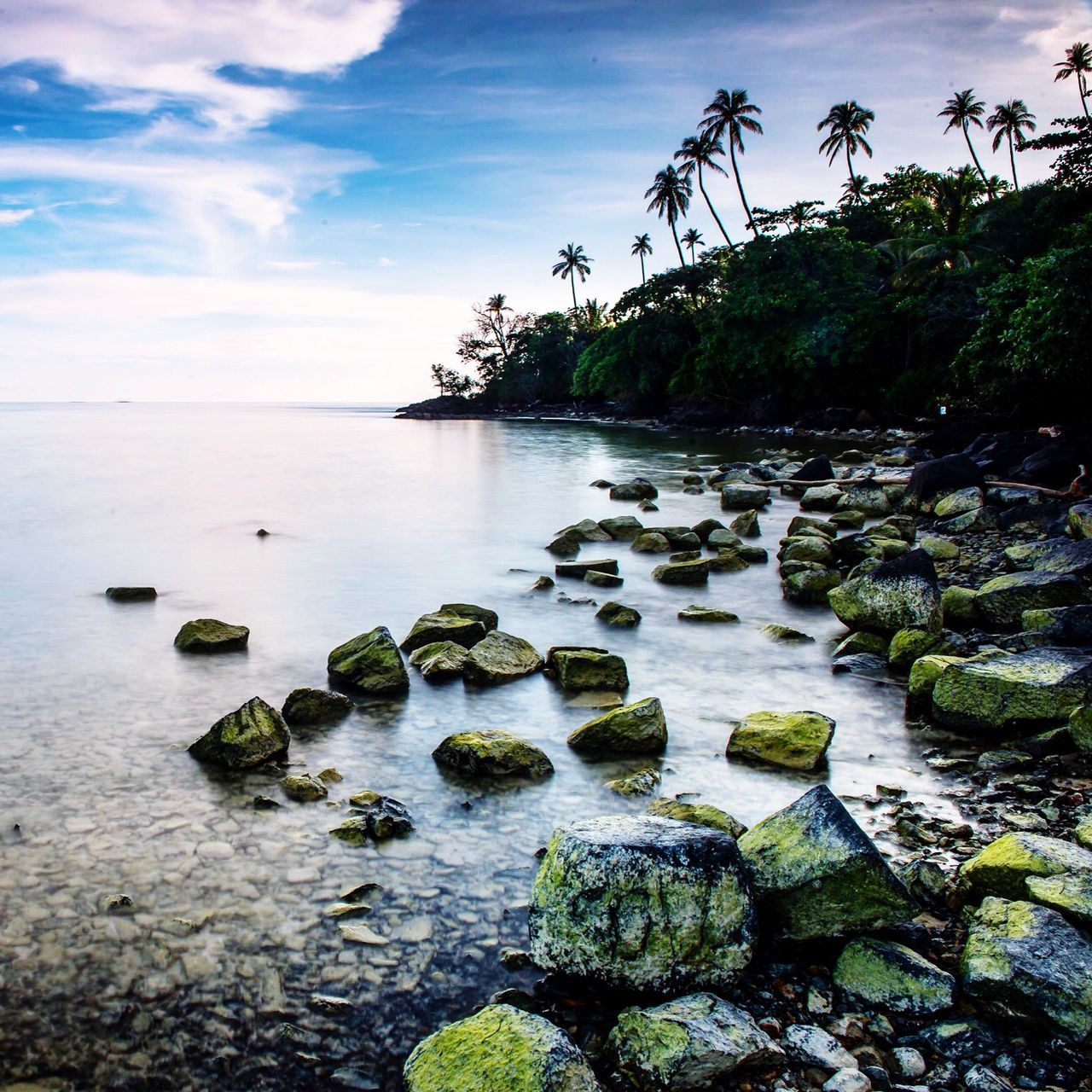 rock - object, sky, water, nature, tranquility, tranquil scene, no people, scenics, beauty in nature, outdoors, sea, day, cloud - sky, tree, beach, horizon over water