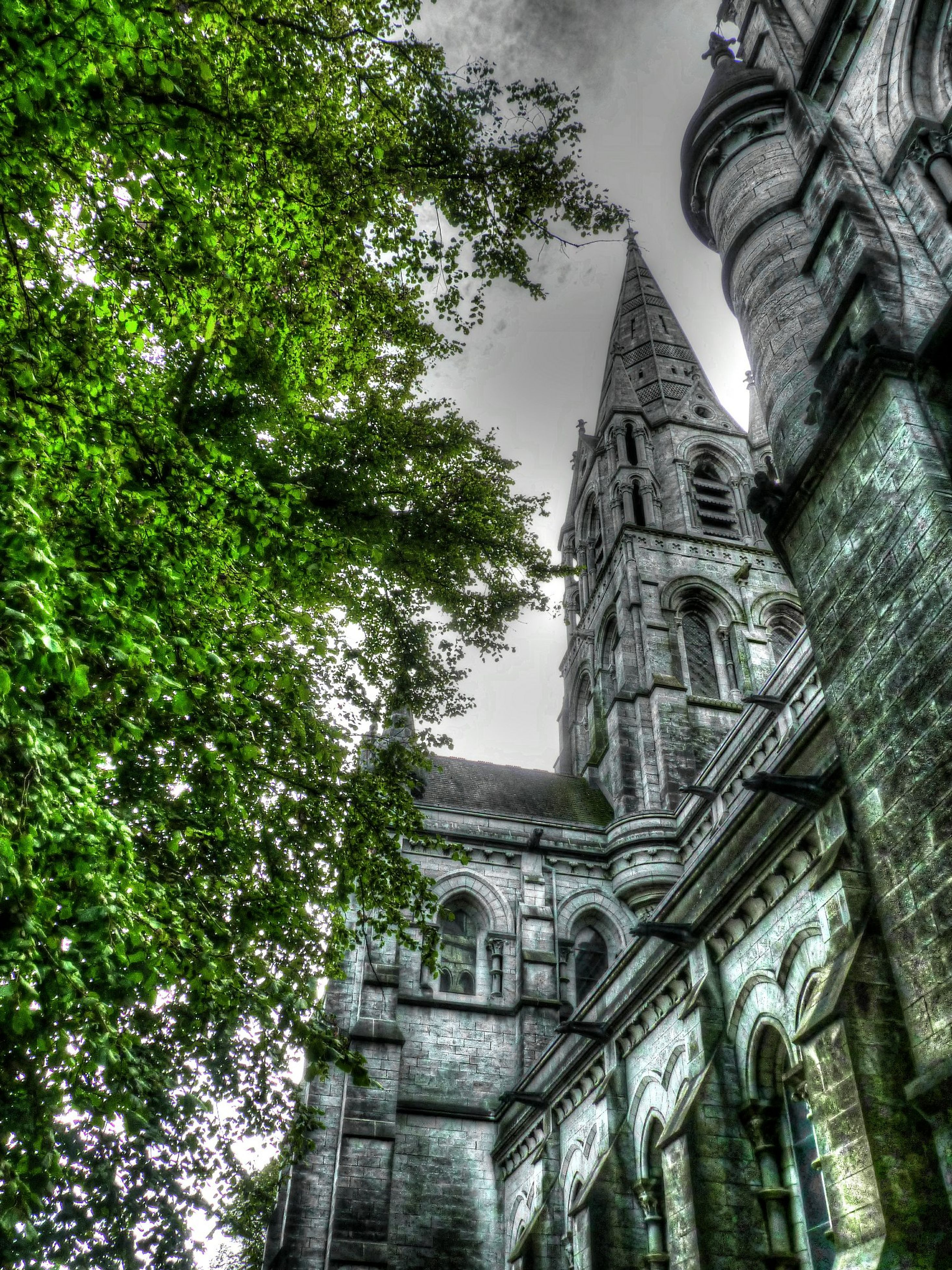 architecture, built structure, building exterior, low angle view, religion, place of worship, spirituality, church, tree, sky, history, cathedral, old, day, no people, outdoors, tower, famous place