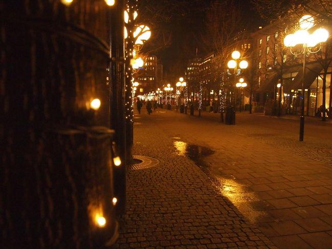 Fairy lights on the streets of Stockholm Christmas City Life City Street Fairy Lights Festive Holiday Illuminated Magical Night Street Light Tree
