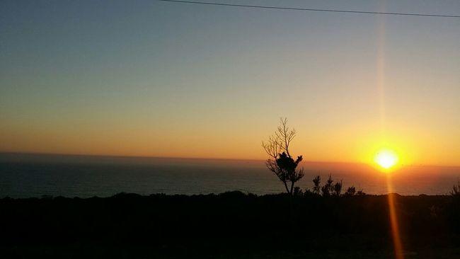Sunset Cloud Beautiful Sky Beach Palm Tree EyeEm Best Shots Morocco Agadir Taghazout EyeEm Nature Lover First Eyeem Photo
