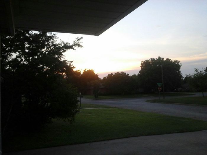 sunset? Tannin✌