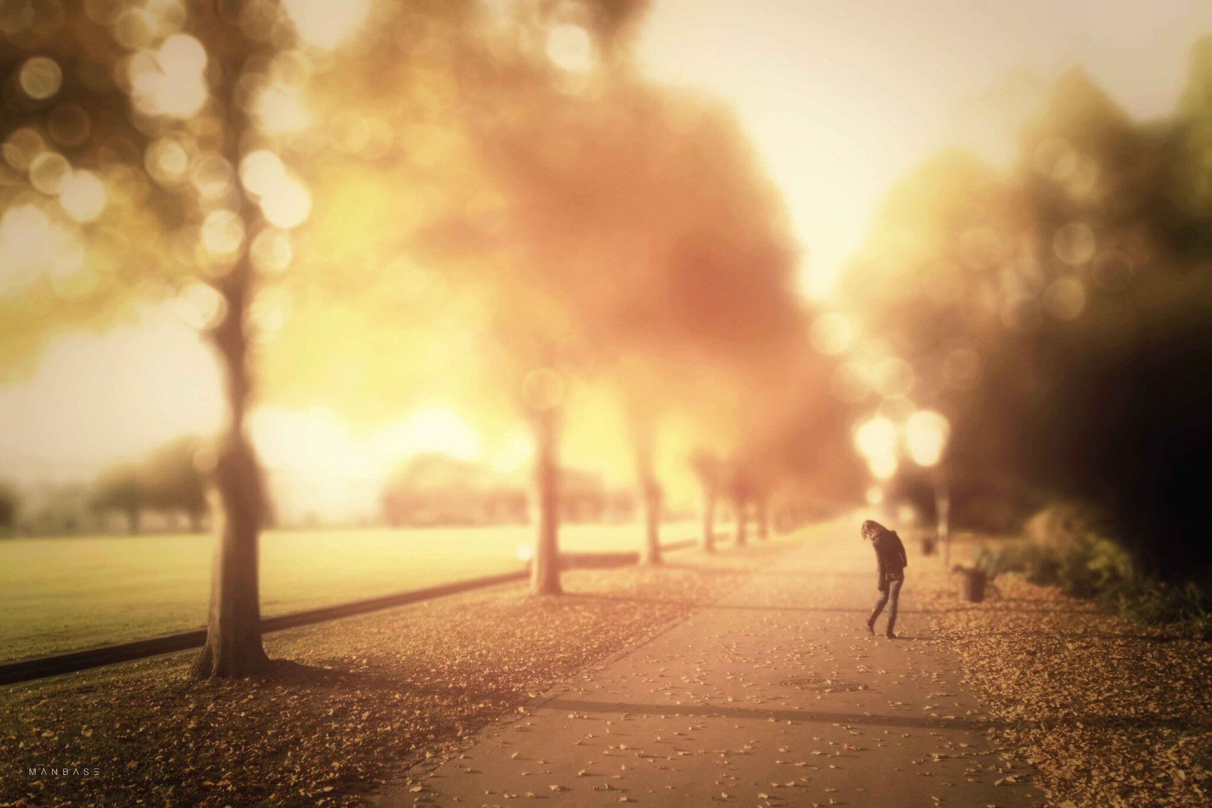 A u t u m n: When dog poop hides under the leaves ~ Tadaa Community ~ Tadaa Masking ~ People ~ Urban Nature