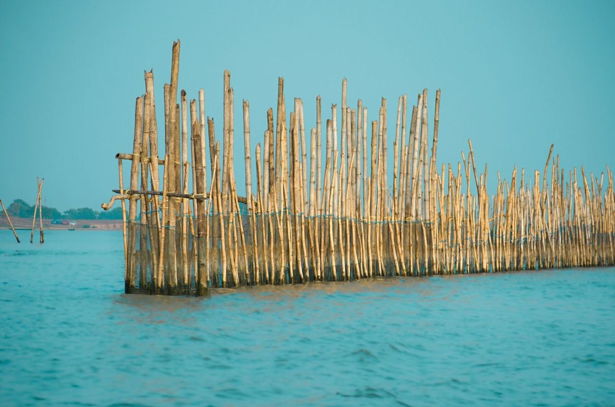 These bamboos are used to put up fishing nets for fish farming in India.Sea Water No People Outdoors Sky Nature Evening Sky Bamboo Fishing Lake View Color Palette Eastcoast Patterns Farming Odisha India Livelihood