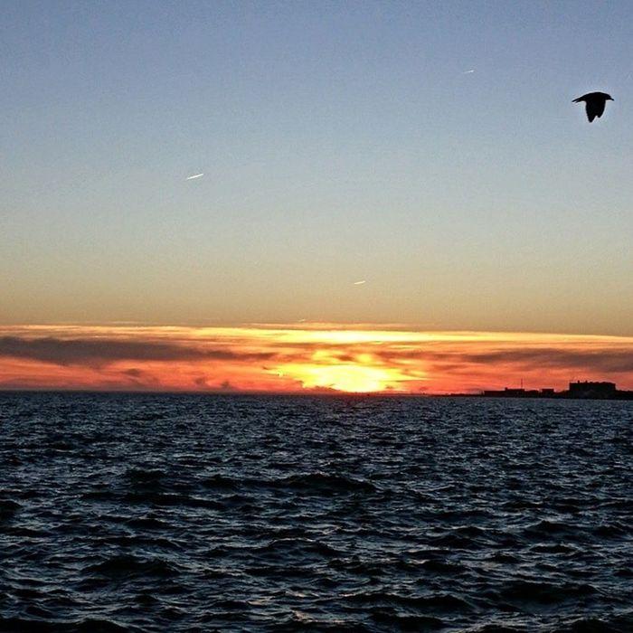 Another Sunset on the Bay Winter Beautiful photooftheday love note3 horizon bestoftheday LongIsland