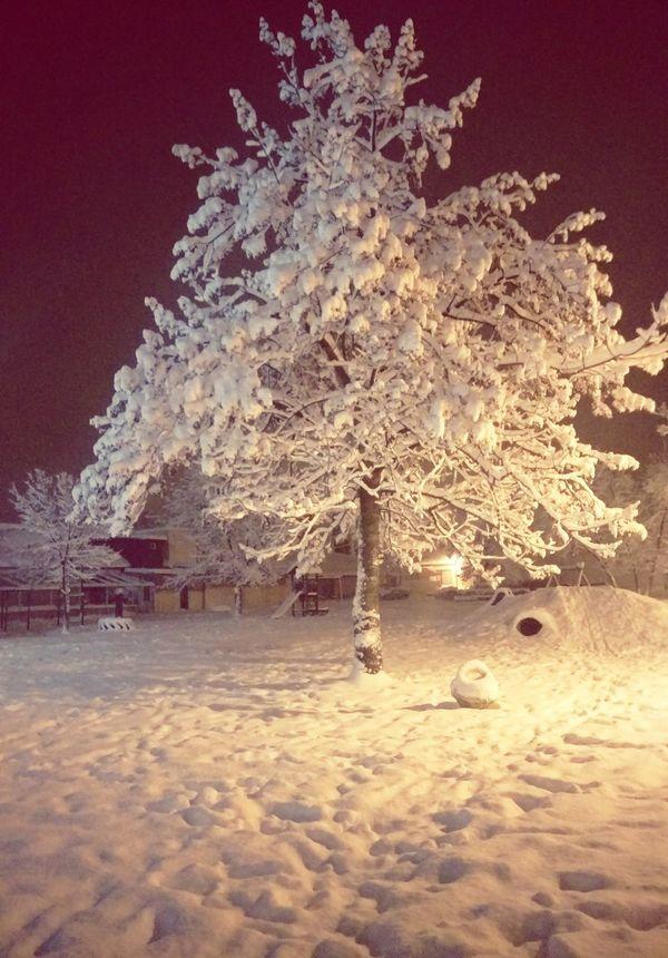 Novagradiška Croatia ♡ Snow ❄ Mostwonderfultimeoftheyear It's Cold Outside