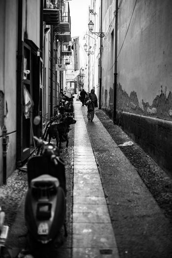 Adult Adults Only Alleyway Architecture Backstreets & Alleyways Building Exterior Built Structure City Day Italian Backstreets Land Vehicle Lost In The City Men On The Move One Man Only One Person Only Men Outdoors Palermo, Italy People Perpective Street The Way Forward Transportation Walking