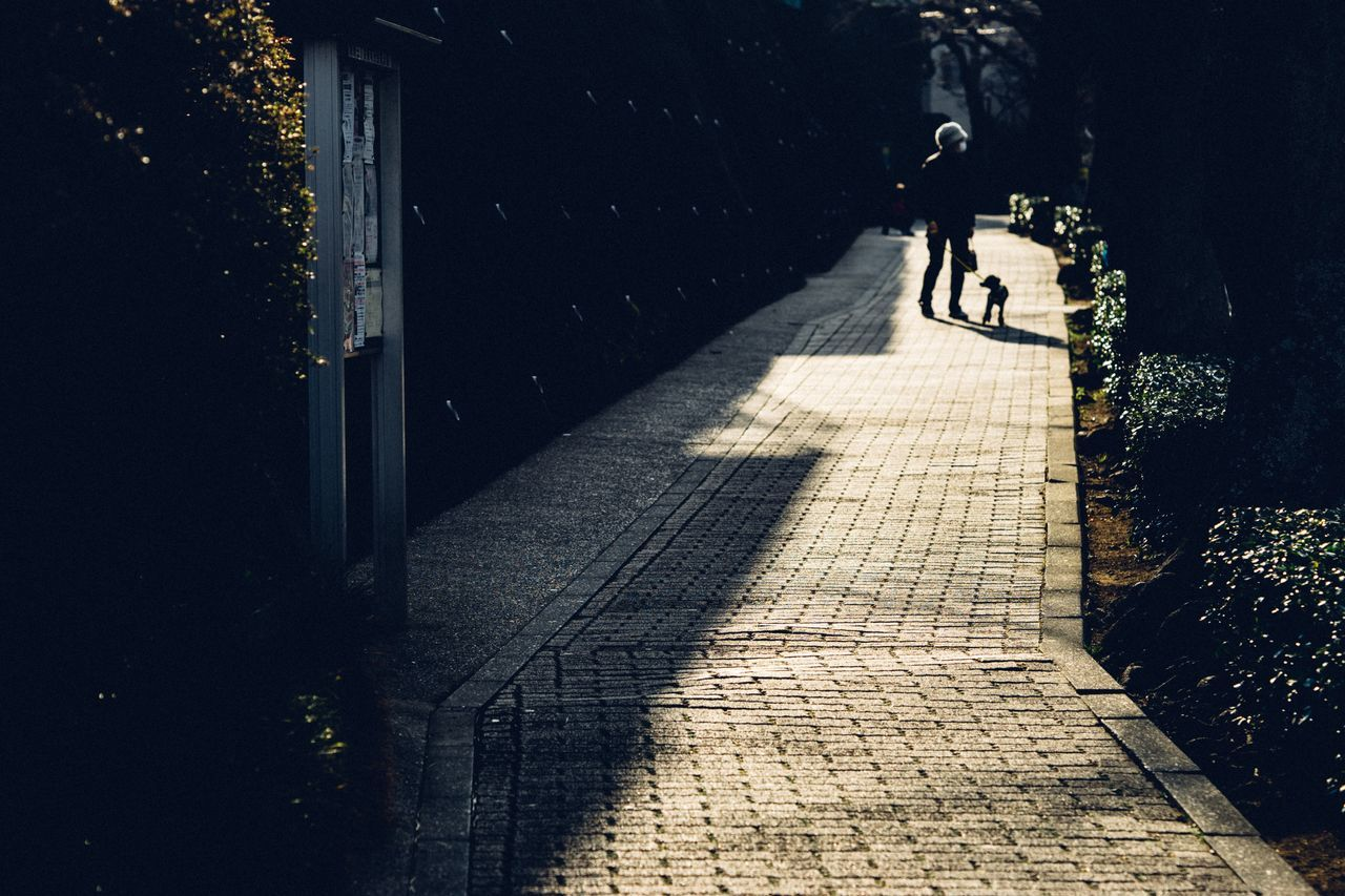 Spring Has Arrived Warm Light Reflection Light Reflections The Way Forward Holiday One Person Atomosphere From My Point Of View Afternoon Path Walking Around Street City Life City Street Yokohama Japan Yokohama, Japan March March 2017