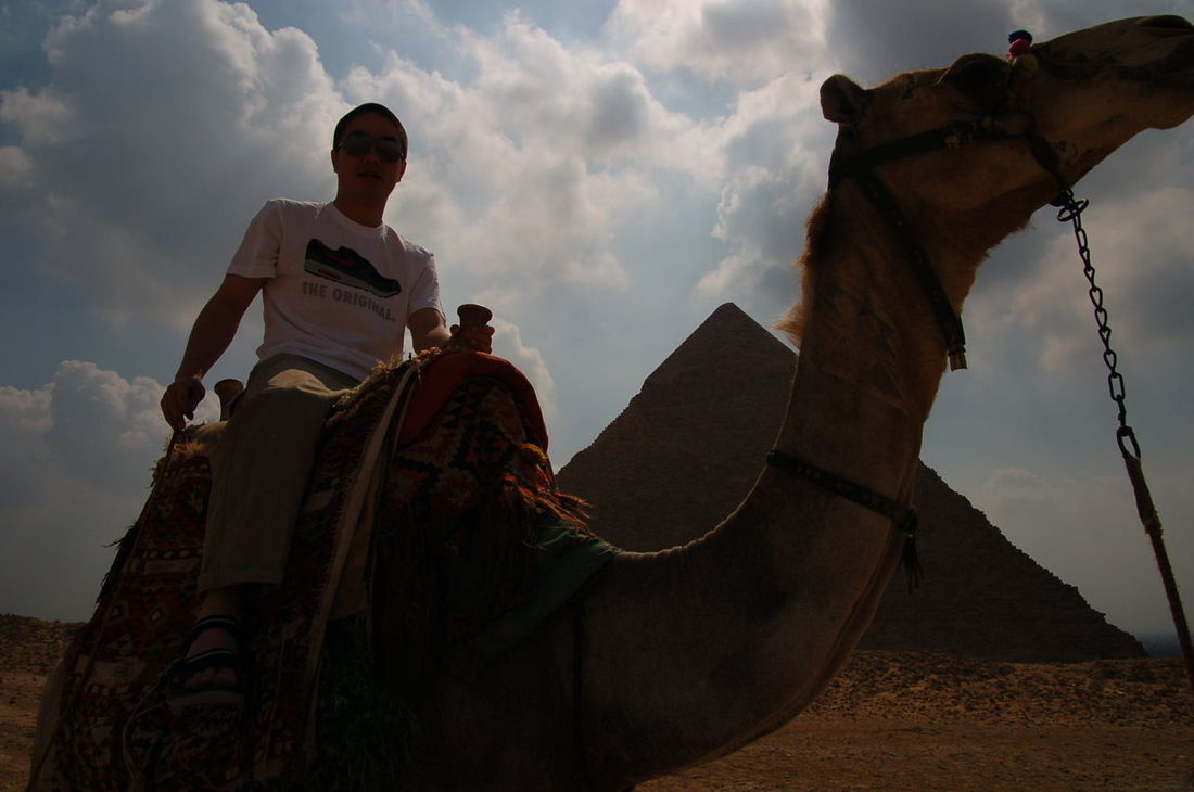 Adult Adults Only Camel Cloud - Sky Day Egypt History Low Angle View Outdoors People Pyramid Sky Travel Travel Destinations