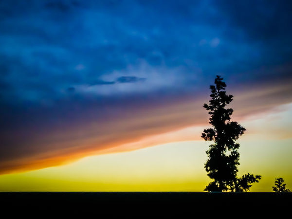 colorful sky.. Beauty In Nature Colorful Sky Colorful Sky And Clouds Colors Day Growth Landscape Nature No People Outdoors Rainbow Colors Scenics Silhouette Sky Sunset Tranquil Scene Tranquility Tree