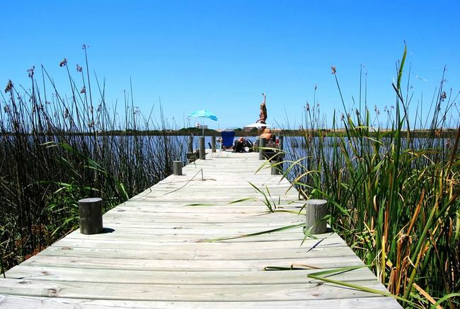 Blue Boardwalk Wood - Material Tranquility Plant The Way Forward Path Pathway Paths Path In Nature Water Relaxing Relax Travel Uruguay Uruguaynatural Punta Del Este José Ignacio People And Places Grass Tranquil Scene Outdoors Sky Path Into The Water Day