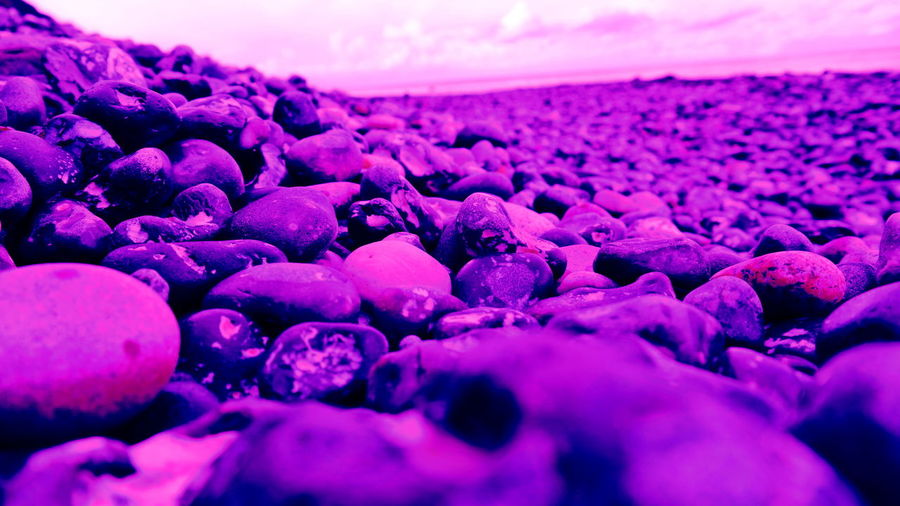 Abnormal Color Collection Coast Detail Küste Life On Mars Natural Pattern No People Pink Rocky Beach Stein Vanilla Sky