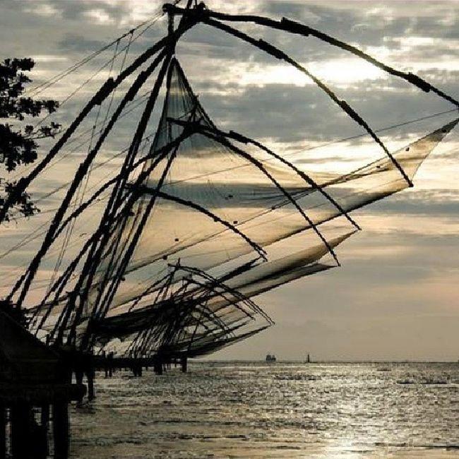 Fishermen Net Early Mornings Sunrise Hardwork Fish Earnings Kolkata India ASIA Poor  People Fish:- an Earning for so many people🎑🗾