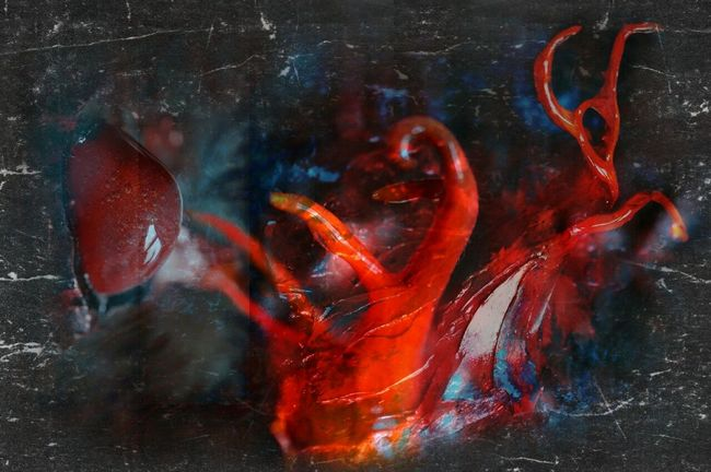 Art Sculptures Paintings Mixedmedia Secret Garden Mixed Media Extreme Close-up Art And Craft Abstract Painting Colorful Darkart Darkness And Light Dark