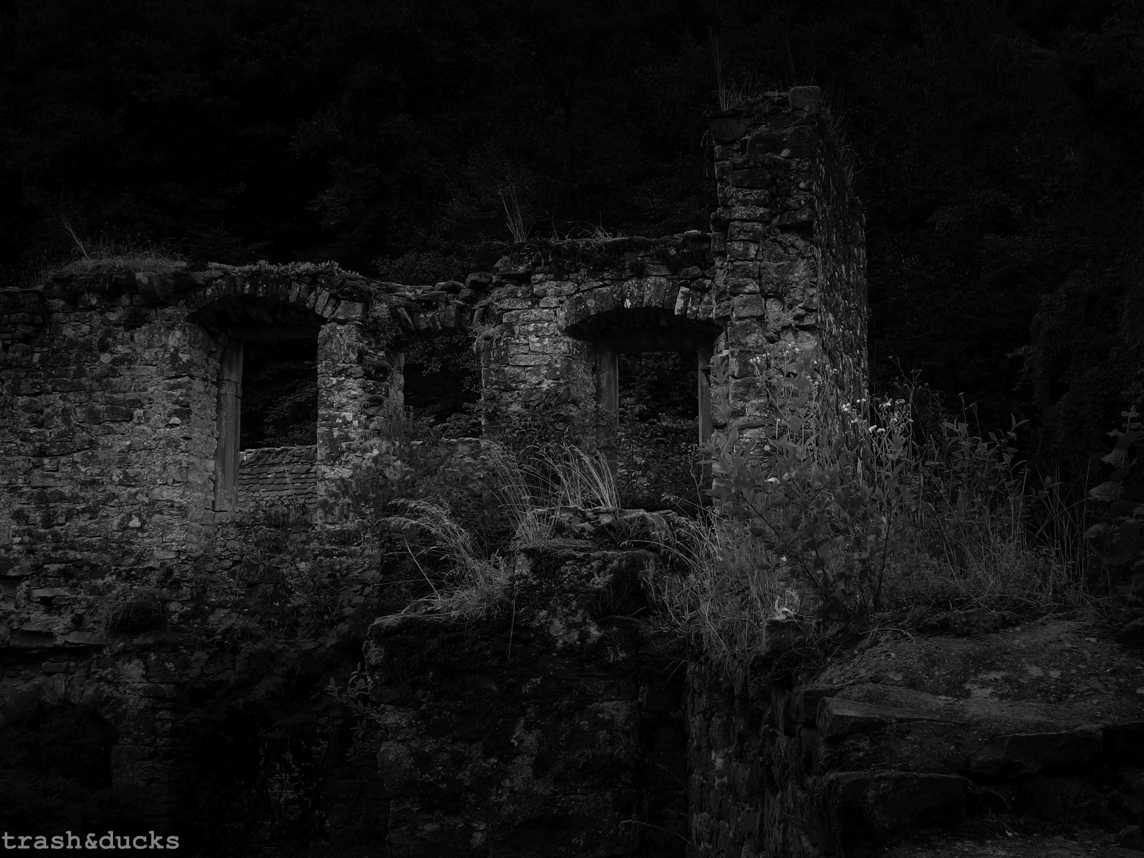 architecture, built structure, building exterior, old, tree, abandoned, damaged, low angle view, weathered, night, run-down, stone wall, house, obsolete, window, wall - building feature, outdoors, deterioration, no people, brick wall
