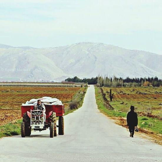 Watani Loubnan Lebanon Liban Bekaa Road