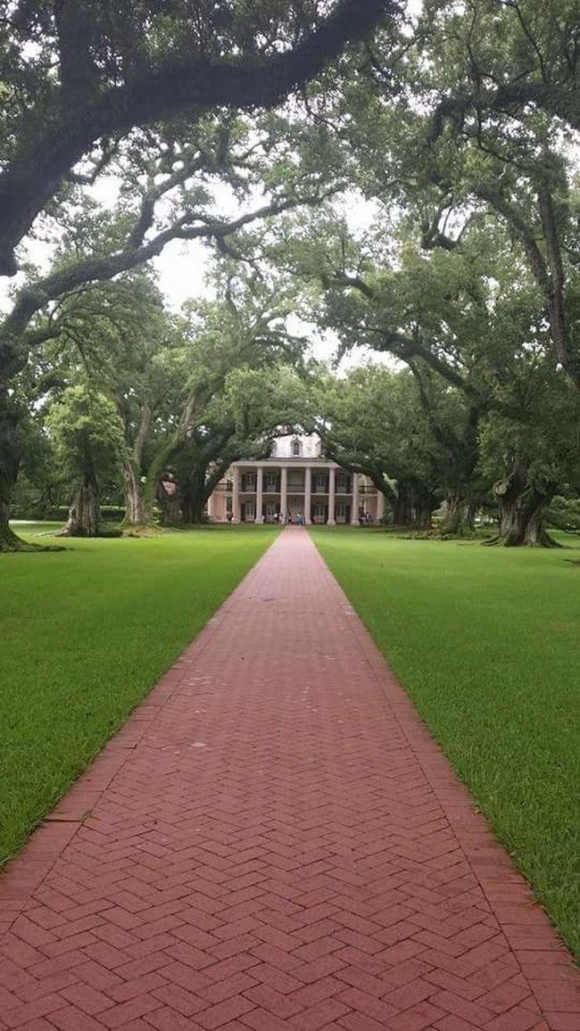 Oaklands Plantation, New Orleans