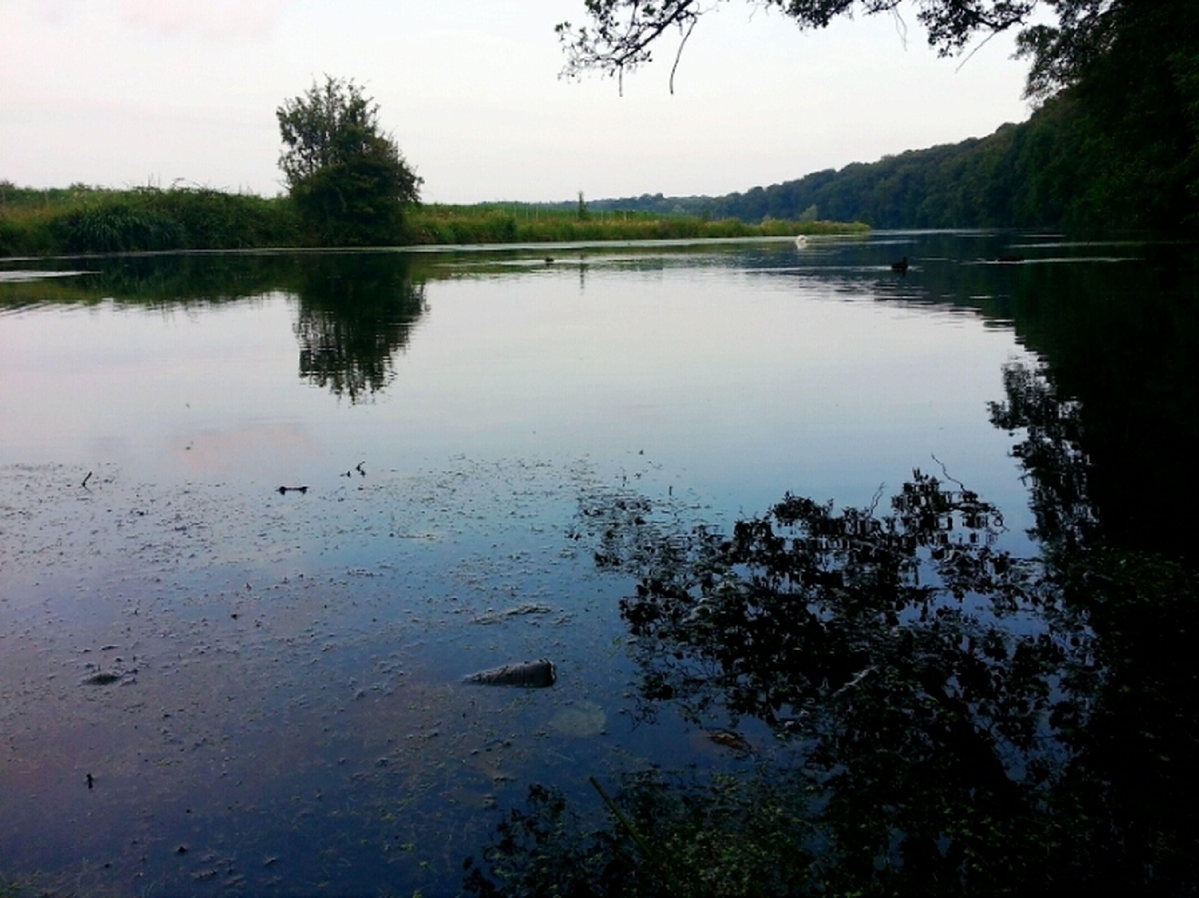 Wasserlandschaft Am Abend Natur Flussufer