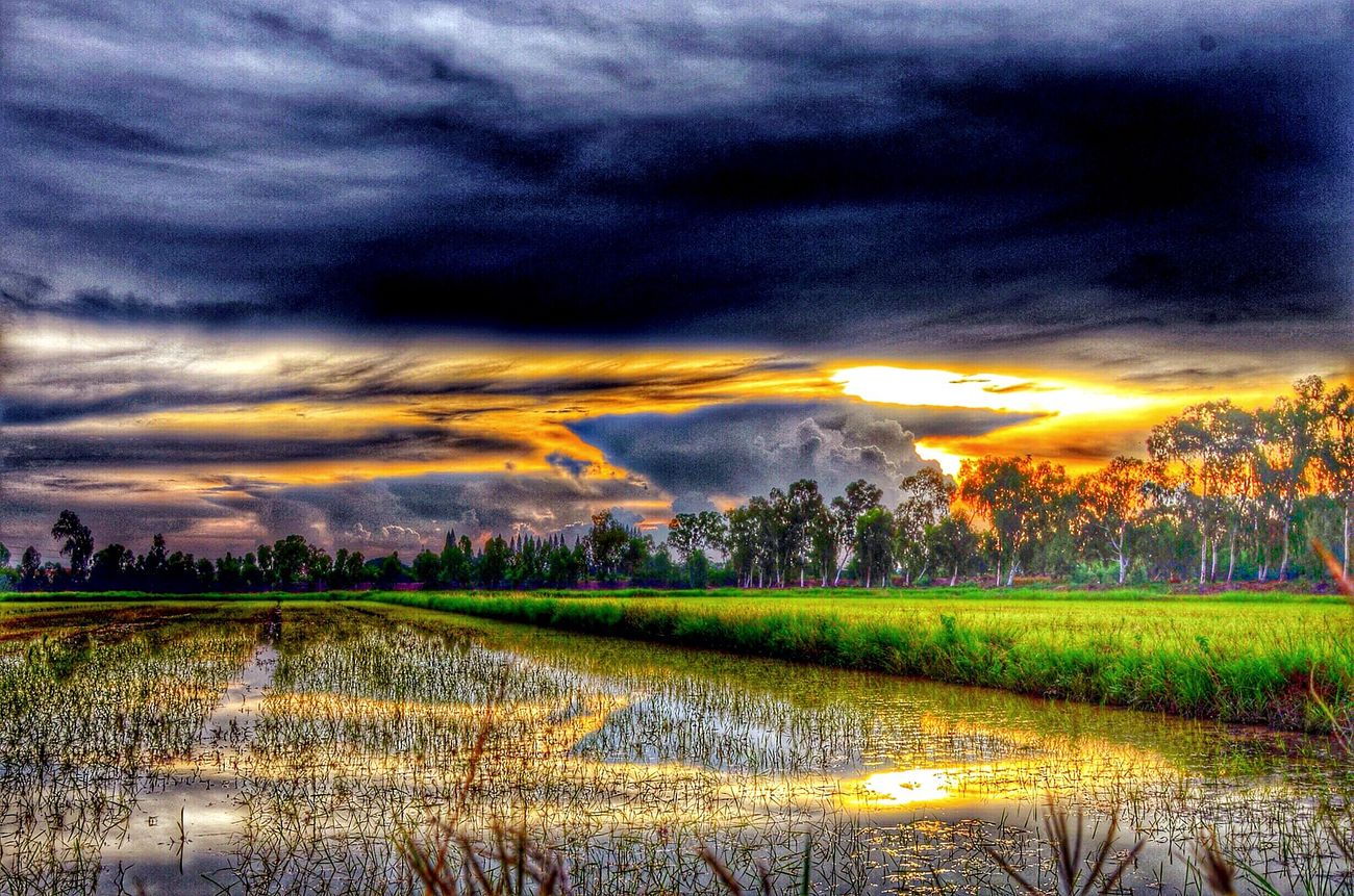How was your day ? Enjoying Life Sunset #sun #clouds #skylovers #sky #nature #beautifulinnature #naturalbeauty #photography #landscape Nature_collection EyeEm Best Edits