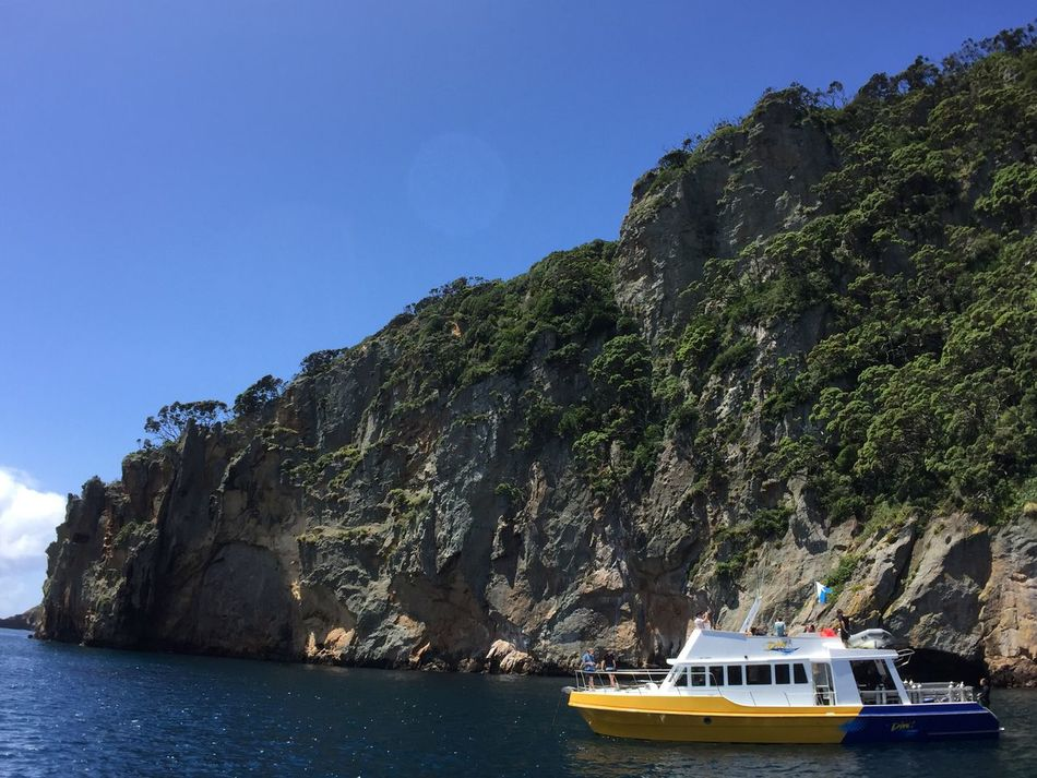 New Zealand Poor Knights Islands Perfect Day