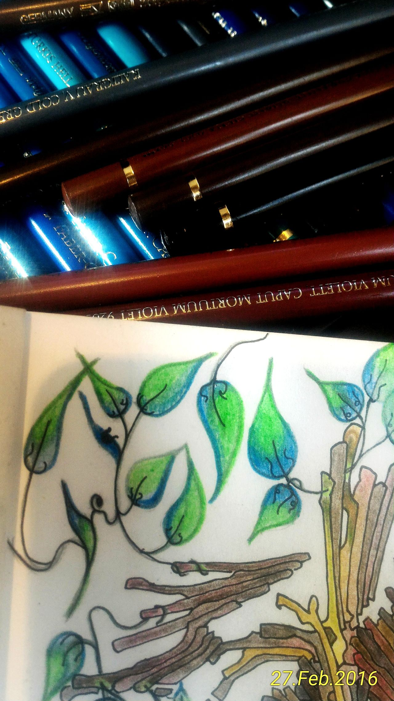 Fabercastell Colours Colourpencils Leaves Relaxing PeterDeligdisch